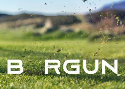 BORGUN-GOLF-MYND24-GUDJON